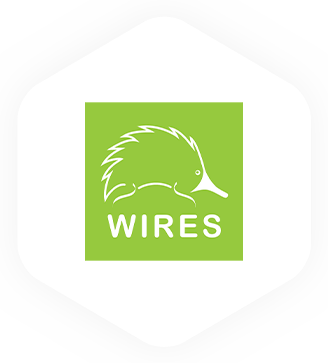 WIRES Project Page Logo